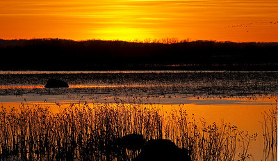 Squaw Creek National Wildlife Refuge, MO