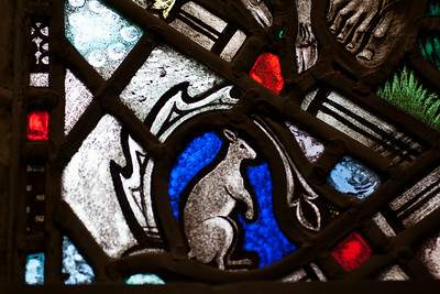 Kangaroo stained glass window at Rosslyn
