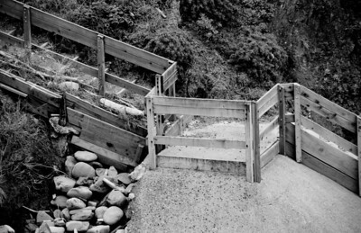 Sea Ranch - May, 2010