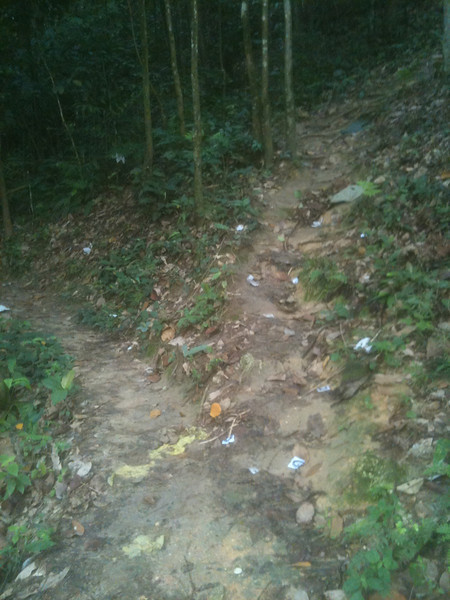 IMG_1904 - take uphill route