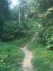 IMG_1932 - go straight uphill