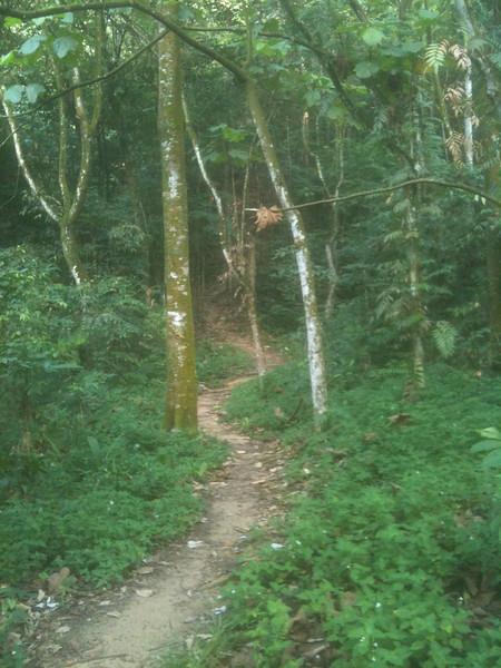 IMG_1903 - go uphill