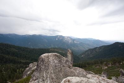 110911_Sequoia_16