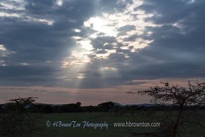 Surreal Skies -- Serengeti National Park