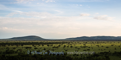Overlooking the Serengeti