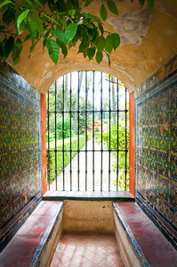 The Alcázar of Seville - garden