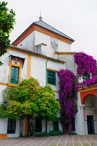 Seville colours