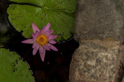 ShangriLa_14_May_2012_081
