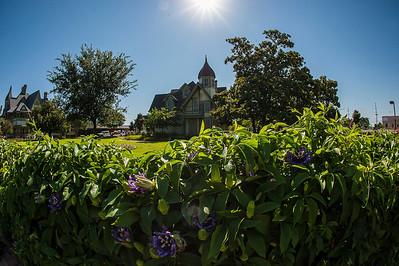 May 31, 2012_Stark House-1012-8