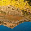 Rippled Reflections<br /> North Lake