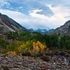 Sierra Autumn<br /> Middle Fork Bishop Creek