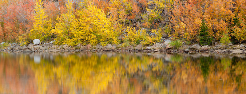 Golden Reflections<br /> North Lake