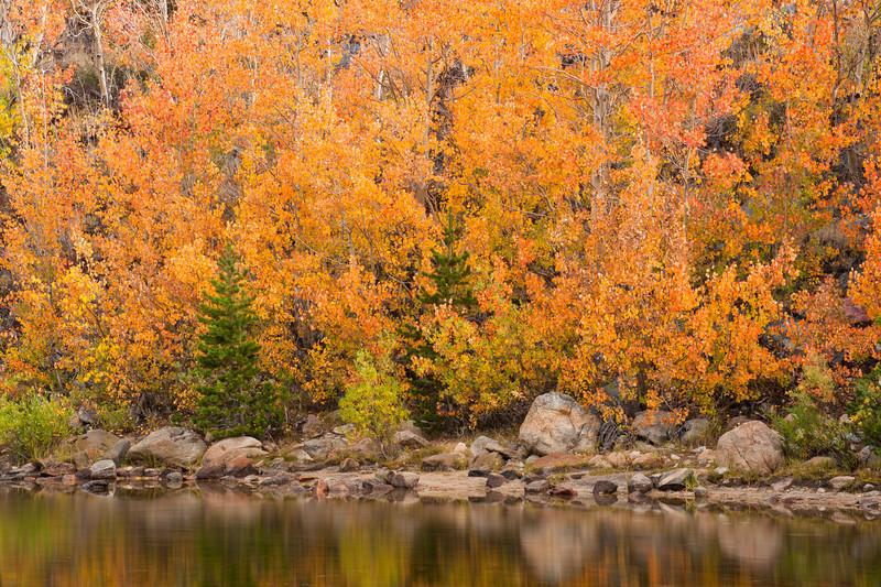 North Lake Gold