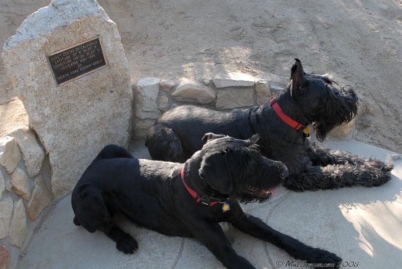 Exact Center of California, Abby and Atlas take a break.