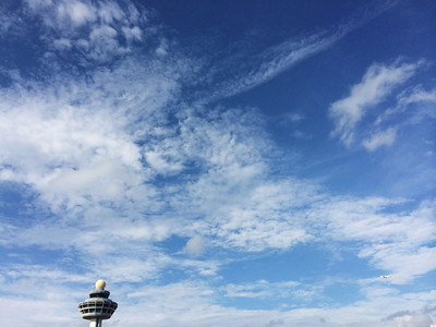 Lovely skies