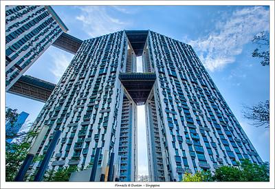 Pinnacle @ Duxton - Singapore