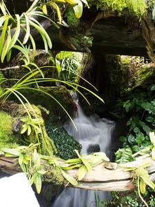 Nice waterfall in Botanic gardens.  Very difficult handheld for 1/4 sec exposure