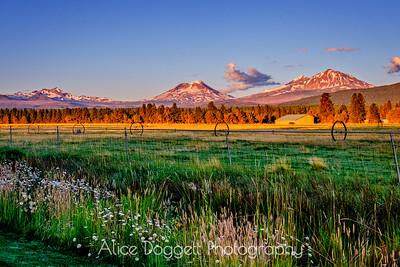 Central Oregon Cascades At Sunrise