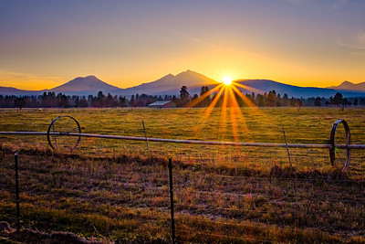 Golden Glow At Sunset