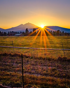 Golden Glow At Sunset - Vertical