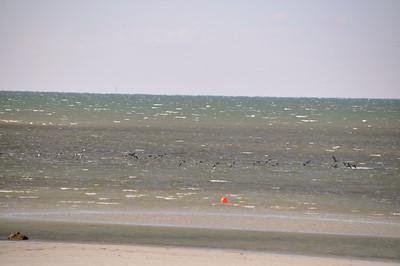 Skaket Beach Orleans