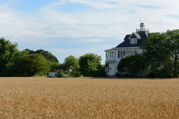 House overlooking wheat field in Reedville.