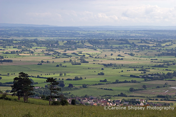 View 4 -across the Levels and Moors from Middle Down Drove, Draycott village in foreground