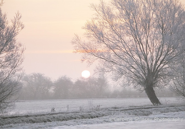 Winter Sunrise on the Levels