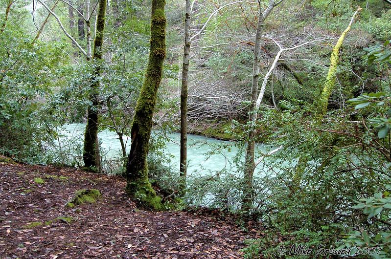 Soda Springs Reserve Sonoma County, CA