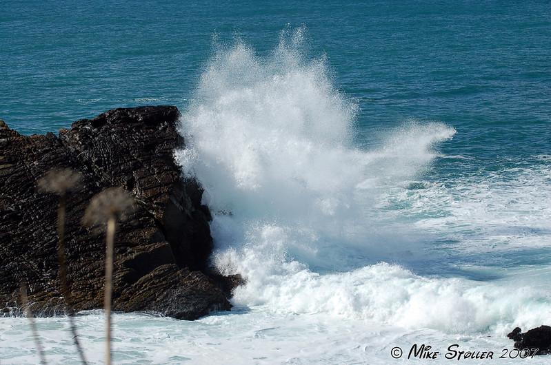 Stillwater Cove, March 2006