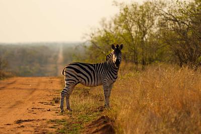 SouthAfrica-113b