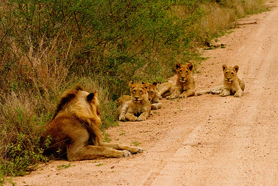 SouthAfrica-121