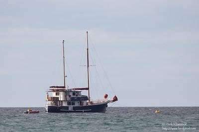 The Samba - Isla Santa Cruz, Galapagos, Ecuador