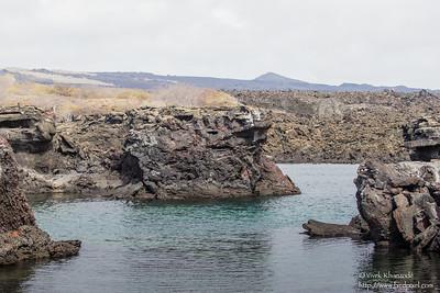 Snorkelling in the lava tube - Punta Mejia, Isla Marchena, Galapagos, Ecuador