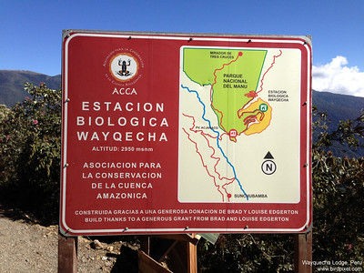 Wayquecha Lodge, Peru