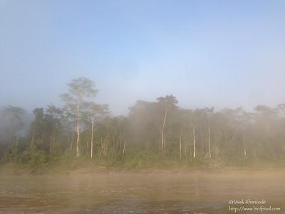Foggy morning on Rio Madre-di-dios - Peru
