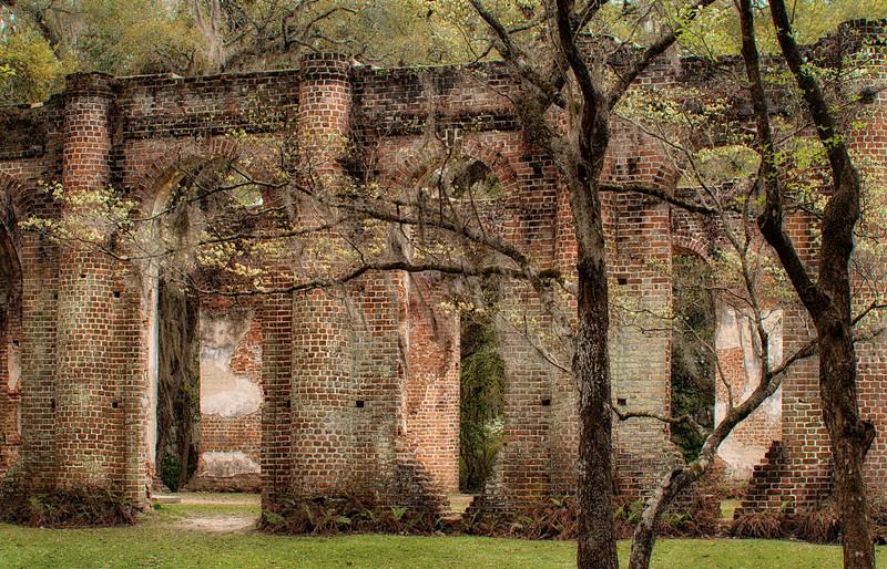 Old Sheldon Church 3_DSC9036