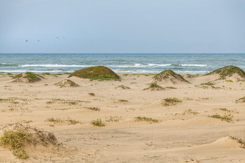 South Padre Island Sand Beach