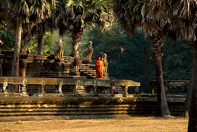 Buddhist Monks in yellow and saffron robes on steps-Angkor Wat-Cambodia