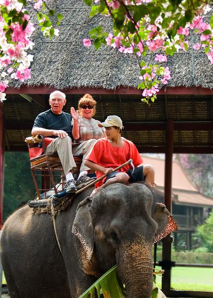Tourists riding elephant-Thailand