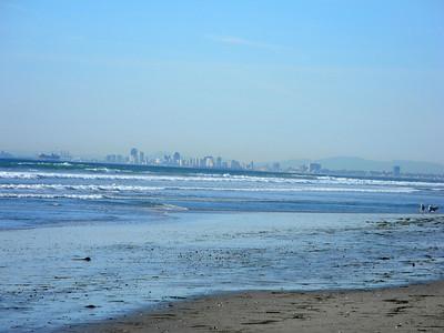 Dog Beach, Feb 2012