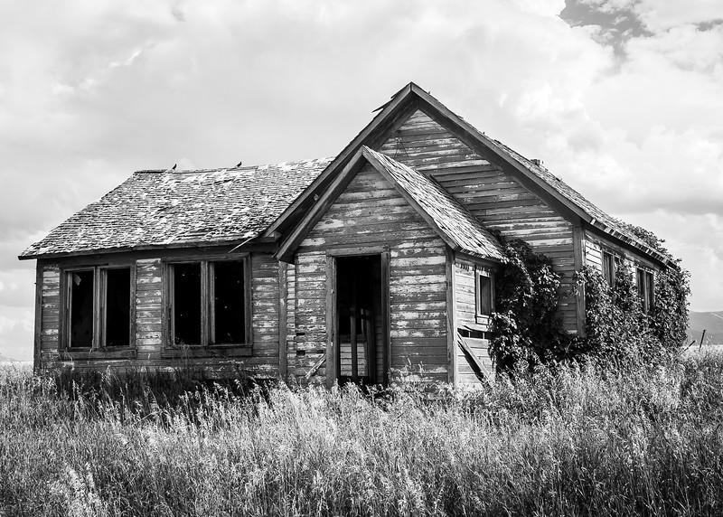 Abandoned Shack #???, 2009