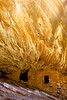 House on Fire Ruin<br /> <br /> House on Fire Ruin is a well known ancestral Puebloan ruin located in Cedar Mesa.