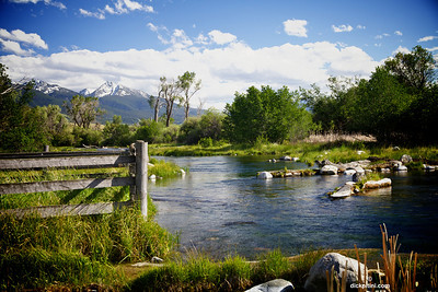 Montana, Nelson's