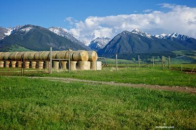 Montana, Livingston, Neslon's