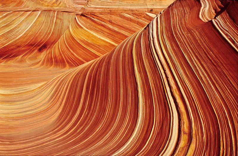 The wave.   Coyote Buttes,  Paria Plateau,  Arizona.