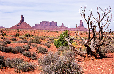 Overview of Monument valley from Artists Point trail.    Monument Valley,  Arizona.