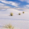 This is gypsum sand which extends for miles.  White Sands NP, white sands, New Mexico.
