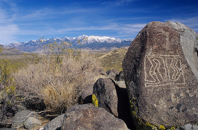 Petroglyph.  Three Rivers,  New Mexico.