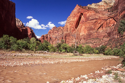 The canyon walls begin to squeeze the virgin river into a place called the narrows.  Zion NP, Utah.
